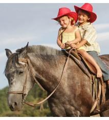 Paseo a caballo por Granada