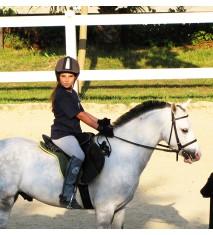 Clase de equitación familiar (Valencia)