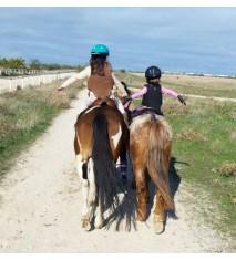 Sentir el mundo del caballo