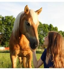 Clase de equitación para tres