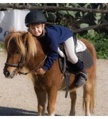 Ponis y caballos con amigos