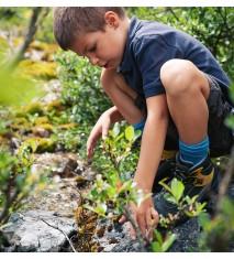 Excursión y visita guiada al jardín botánico de Santa Catalina   Taller de manualidades