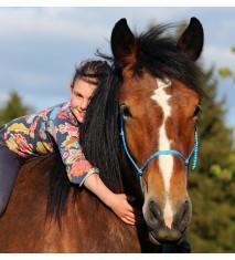 Paseo a caballo por el campo   Menú