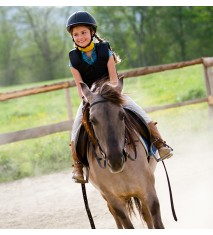 Curso intensivo de equitación
