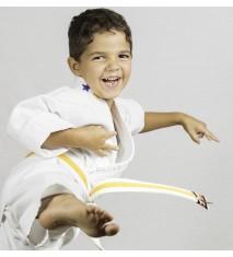 Introducción al judo (Madrid)