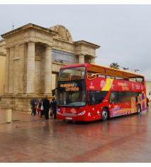 Paseo en bus turístico por Córdoba