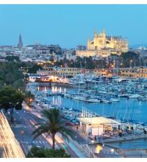 Paseo en bus turístico por Palma de Mallorca