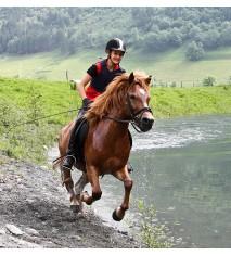 El mundo de los caballos (Huelva)