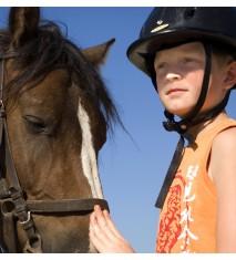 El mundo de los caballos (Badajoz)