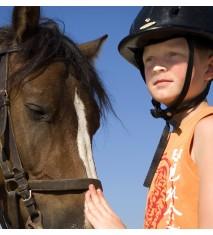 Clase de equitación con ruta a caballo