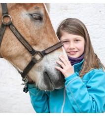 Clase familiar de equitación