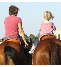 El mundo de los caballos (Cáceres)