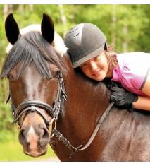El mundo de los caballos (Lugo)