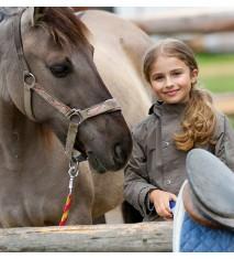 El mundo de los caballos (Orense)