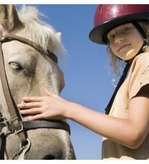 El mundo de los caballos (Ávila)