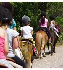 Cumpleaños paseando a caballo XL