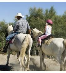 El mundo de los caballos (Asturias)