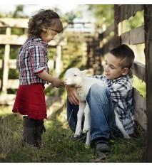 Descubre la vida en la granja (León)
