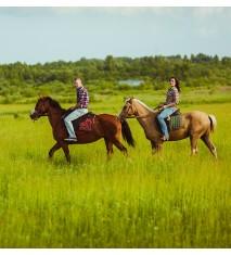 El mundo de los caballos (Tarragona)
