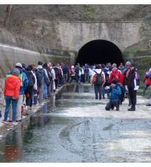 """Excursión al Túnel de Montclar + Visita guiada al Castillo de Montclar + Comida o cena para 2 en """"La Botiga"""" de Montsonís"""