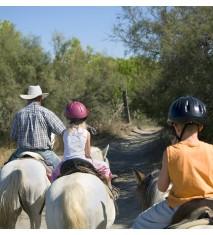 El mundo de los caballos (La Coruña)