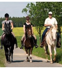 Actividades de granja + Paseo en poni o caballo (Alicante)