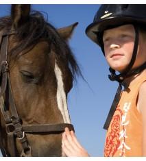 Actividades de granja + Paseo en poni o caballo (Zamora)