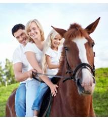 El mundo de los caballos (Sevilla)