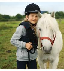 El mundo de los caballos (Guipúzcoa)
