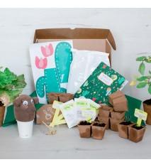 Diviértete cultivando - Kit creativo