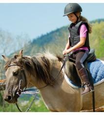 El mundo de los caballos (Castellón)