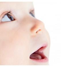 Mini sesión fotográfica bebés