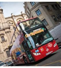 Paseo en bus turístico por Málaga