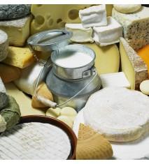Taller de elaboración de quesos