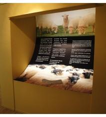 Visita en familia al Centro de Interpretación del Queso Idiazábal